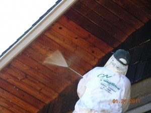 c n painting on Maui craig novak pressure washing
